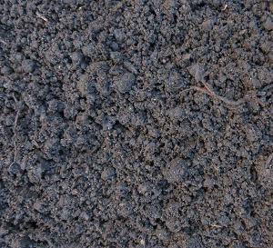 product image for peat moss